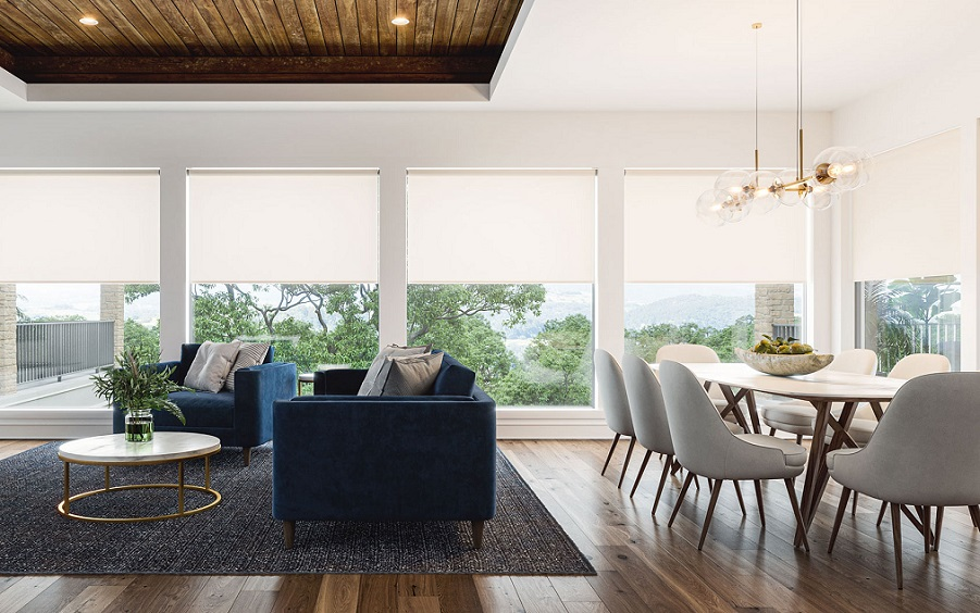 Elevate Your Living Space with Smart Shades